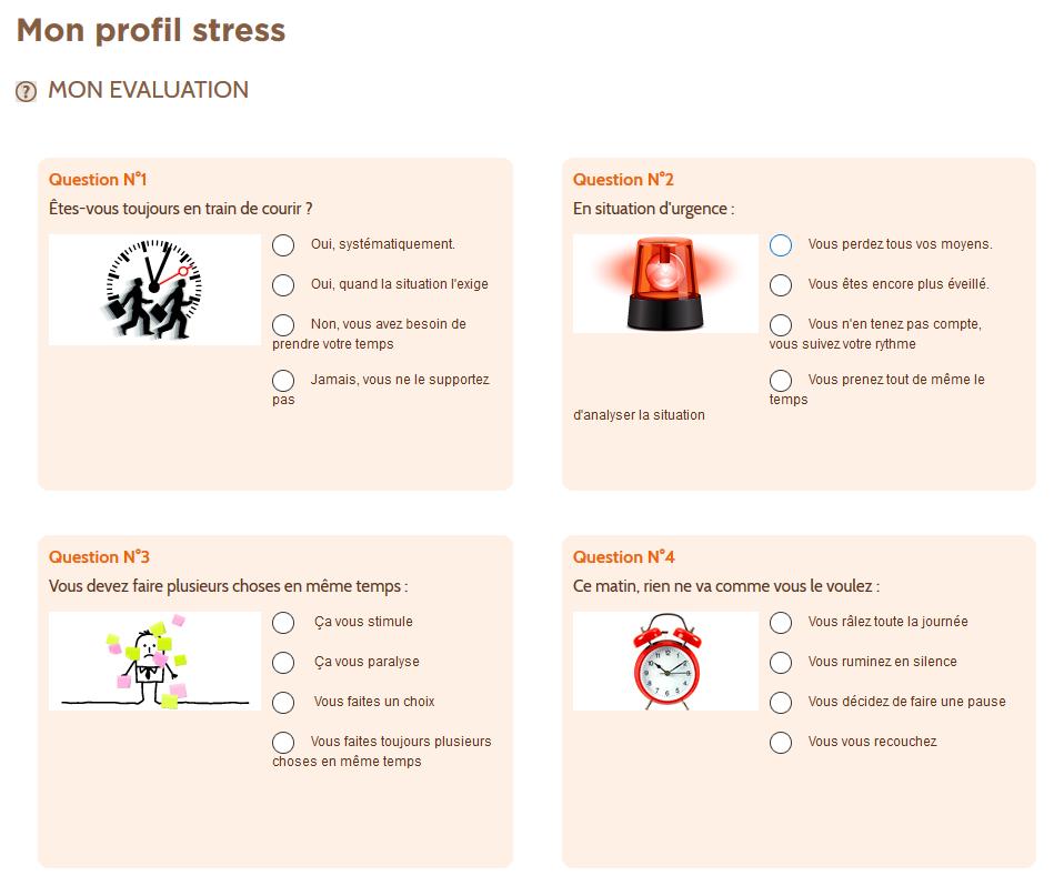 Extrait du questionnaire Mon Profil Stress de Mon Capital Santé